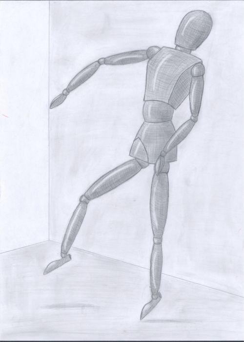 Brückmann Anatomie