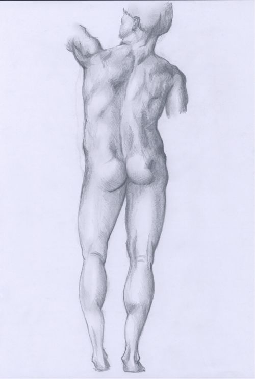 Hügues Anatomie2