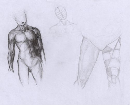 Peters Anatomie